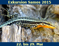 Exkursion-Samos-2015