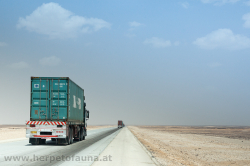 Endless straight road with countless trucks - Eine ewige Gerade, voll mit LKW\'s